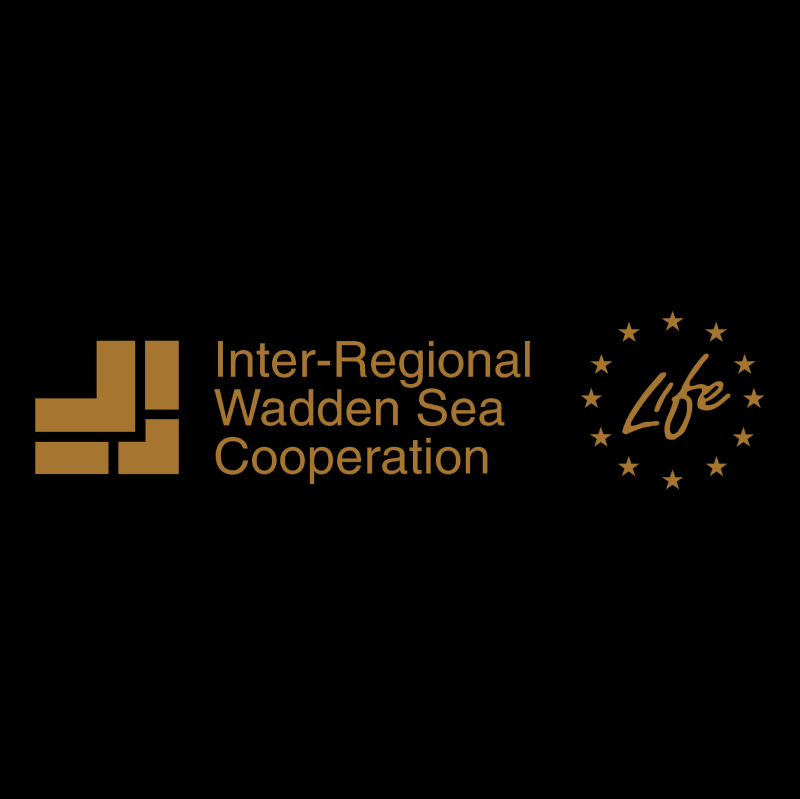 Inter Regional Wadden Sea Cooperation vector