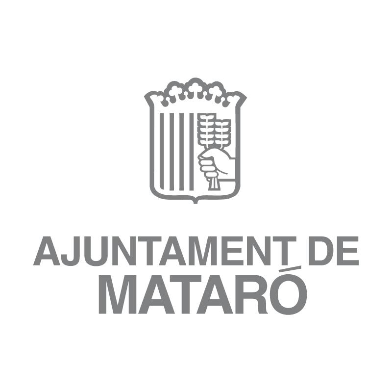 Ajuntament De Mataro 49720 vector