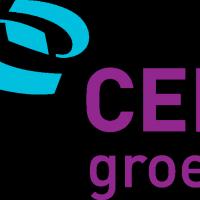CED Groep vector