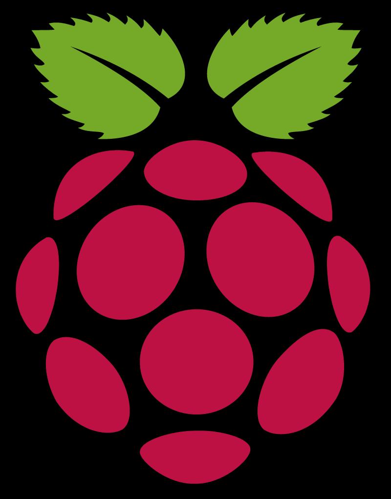 Raspberry Pi vector