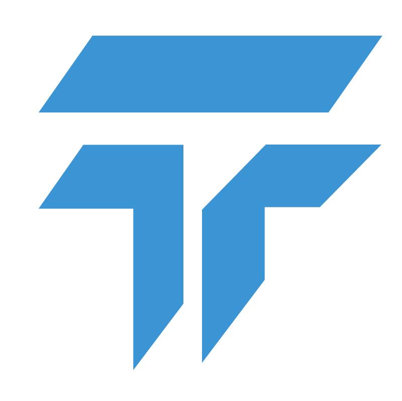 Todini Gruppo vector